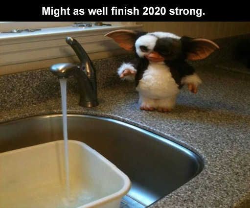 gremlin sink might as well finish 2020 strong