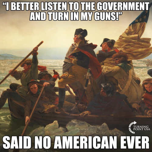 i better listen to government and turn in guns says no american ever