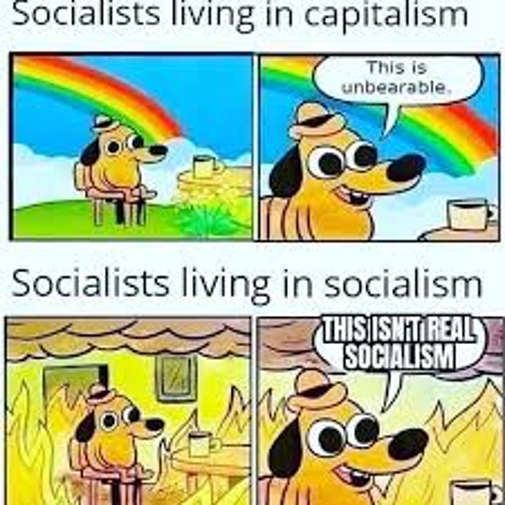socialists living in capitalism unbearable in socialism isnt real socialism this is fine