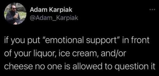tweet adam karpiak emotional support liquor ice cream no one can question