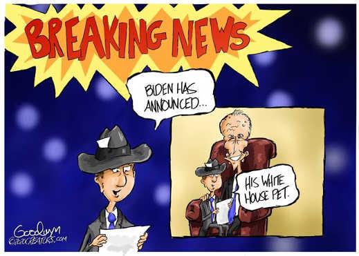 breaking news joe biden white house pet mainstream media