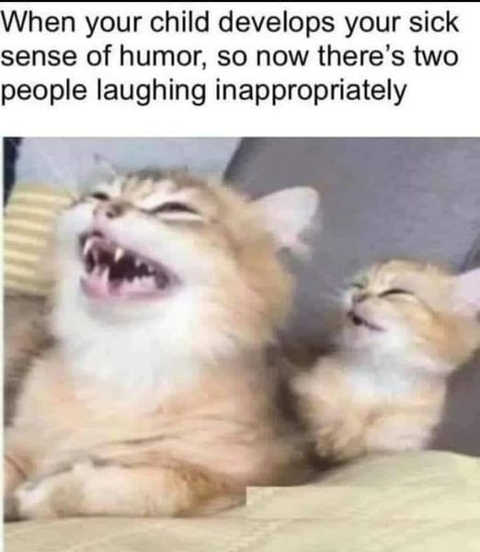 cats when child develop sick sense of humor two people laughing inappropriately