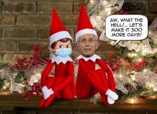dr fauci elf shelf masks lets make it 300 more days