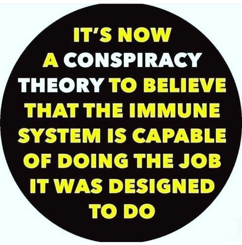 its now a conspiracy theory to believe immune system capable of doing job designed to do