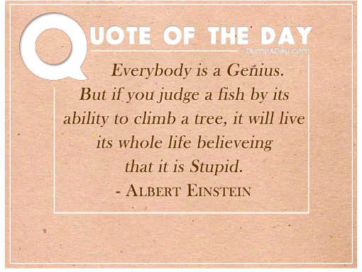 quote albert einstein everyone genius think stupid judge fish ability to climb tree