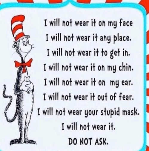 cat in hat i will not wear on face place chin do not ask