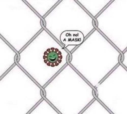 coronavirus covid oh no a mask fence