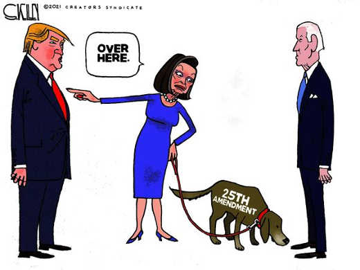 nancy pelosi 25th amendment joe biden dog