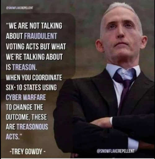 quote trey gowdy talking about fraudulent voting acts treasonous
