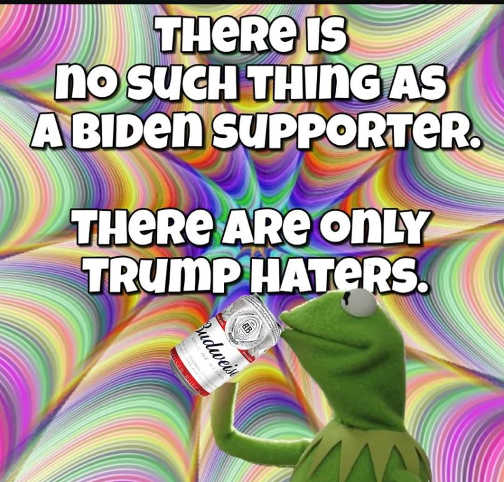 there is no biden supporter only trump haters kermit budweiser