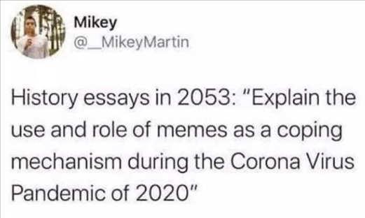 tweet history essays 2053 explain memes coping corona virus 2020