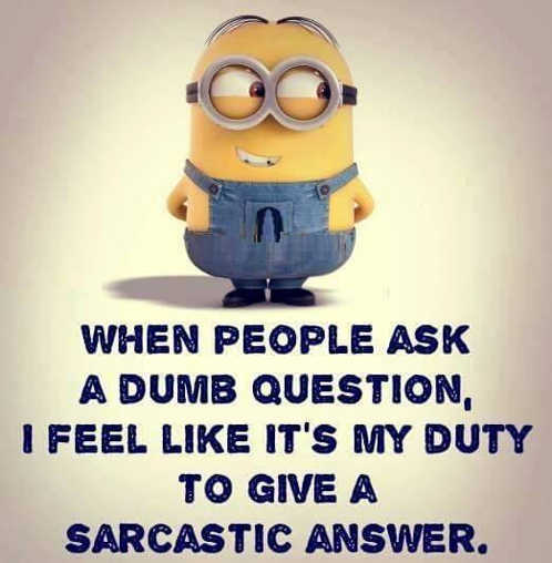 when people ask dumb question feel my duty give sarcastic answer