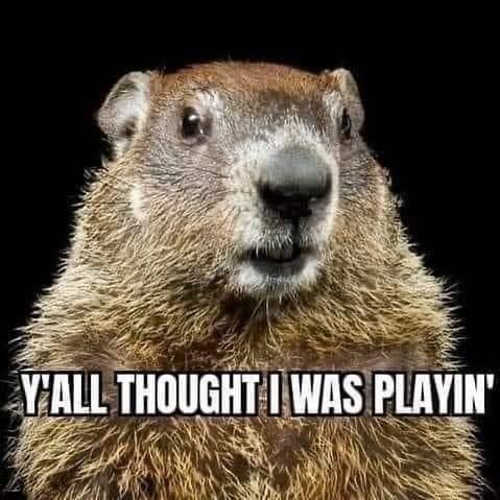 groundhog yall thought i was playing winter