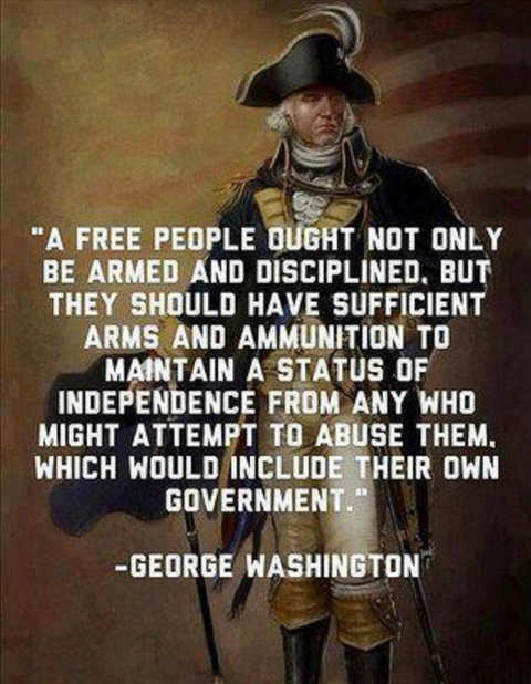 quote george washington armed against government if abuse