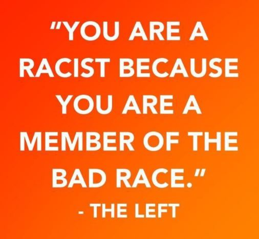 quote left you are racist because member of bad race