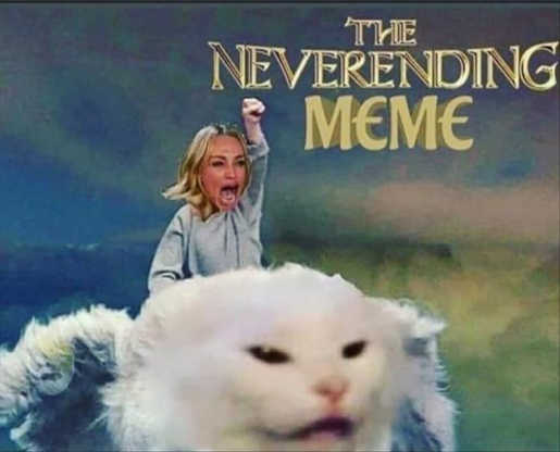angry lady smudge cat neverending meme story