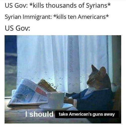 cat ggovernment bombs syria take guns away from americans