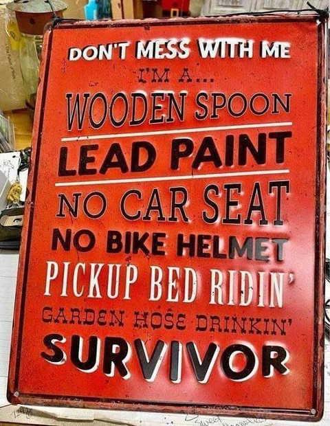 dont mess with wooden spoon lead paint no bike helmet survivor