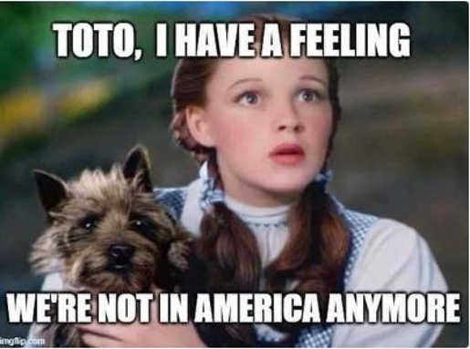 dorothy have feeling not in america anymore toto