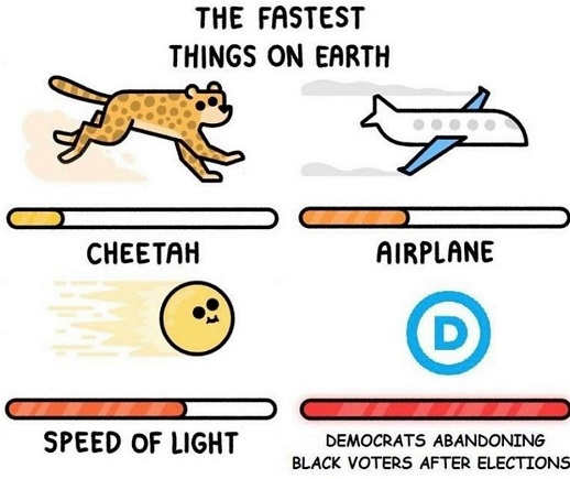 fastest things on earth cheetah airplane speed of light democrats abandoning blacks after election
