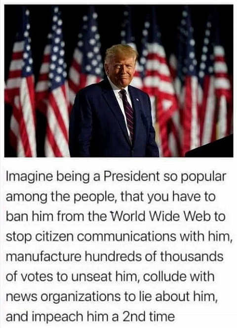 imagine president trump so popular ban from web manufactur votes lie impeach