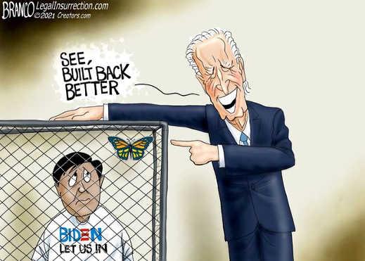 joe biden kids cages butterfly built back better