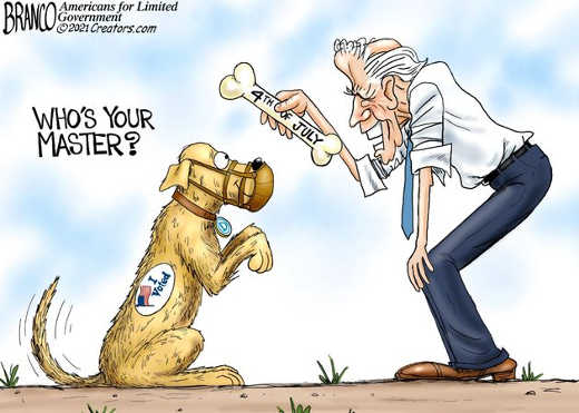 joe biden whos master dog bone voted muzzle 4th july
