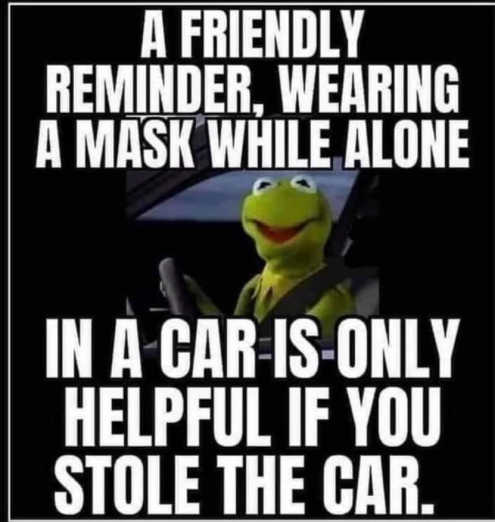 kermit reminder wearing mask alone in car only help stole