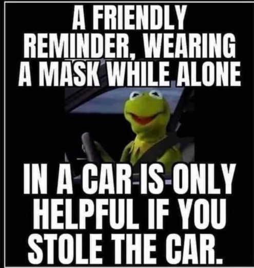 kermit-reminder-wearing-mask-alone-in-ca