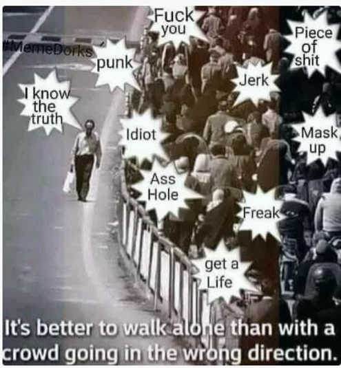 message better walk alone than with crowd in wrong direction