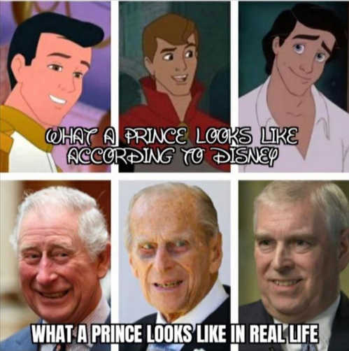 what disney prince looks like compared to real life