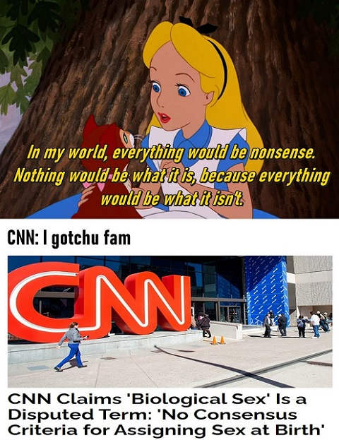 alice wonderland nonsense world cnn biological sex