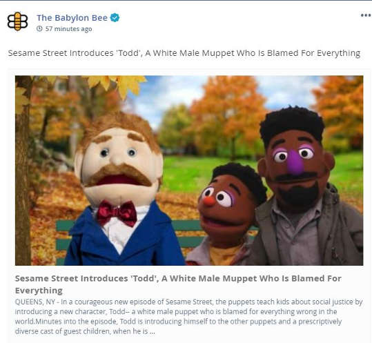 babylon bee sesame street todd white male muppet blamed for everything