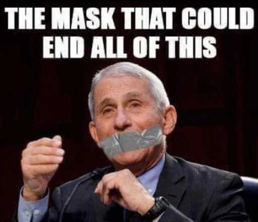 dr fauci mask that could end all this duct tape
