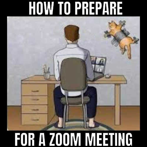 how to prepare for zoom meeting duct tape cat wall