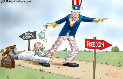 new normal freedom dr fauci stopping