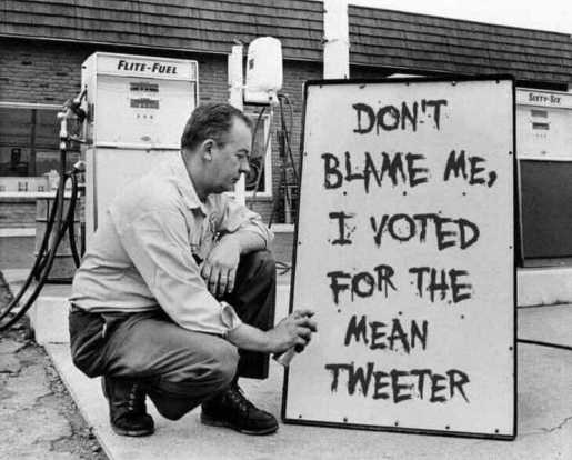 sign dont blame me i voted for the mean tweeter trump