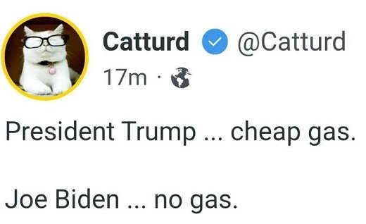 tweet catturd trump cheap gas biden no gas