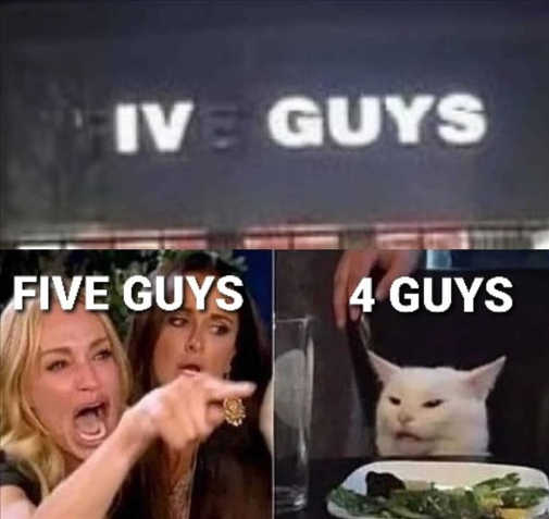 angry lady cat smudge five guys iv 4 guys