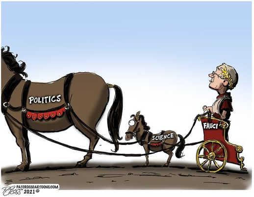 dr fauci roman chariot following science politics horses