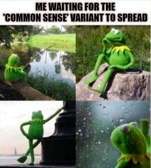 kermit me waiting for the common sense variant to spread