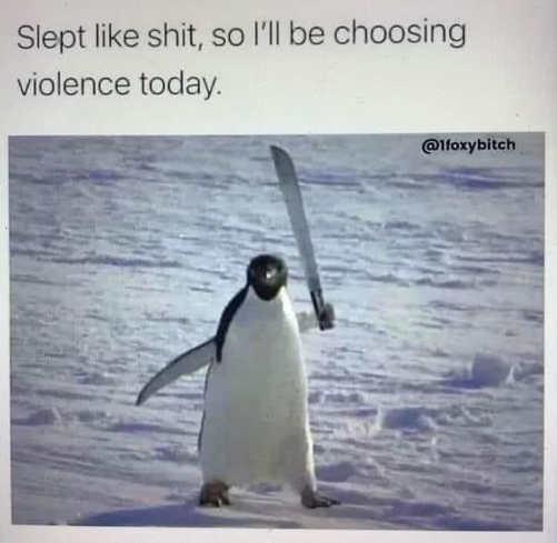 penguin slept like shit choosing violence today
