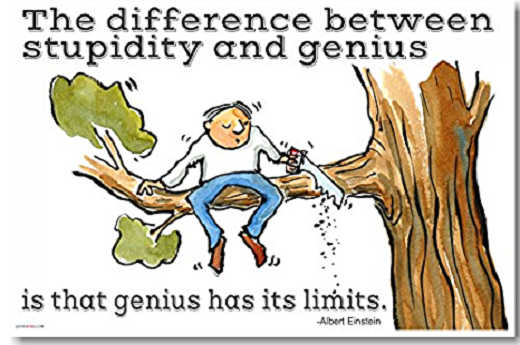 quote albert einstein difference between stupity and genius limits