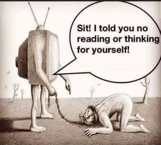 tv sit told you no reading or thinking for yourself