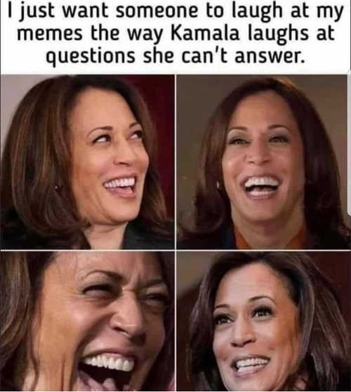 want someone laugh memes way kamala when cant answer question