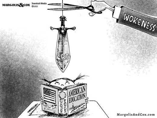wokeness destroying american education sword