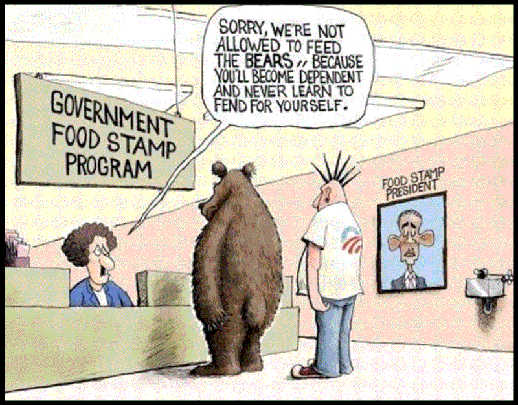 government food stamp program not allowed to feed bears dependent