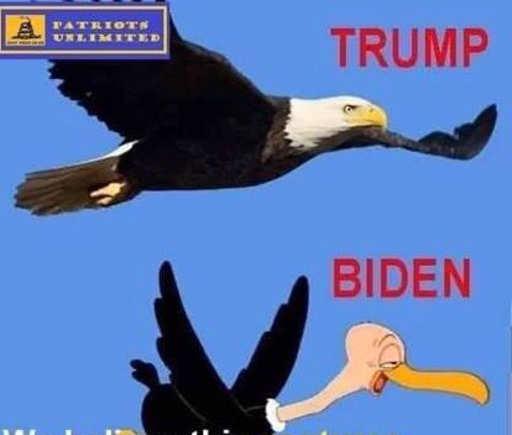 trump biden eagle personalities