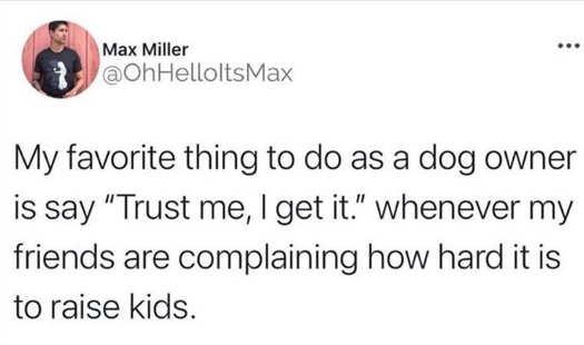 tweet miller favorite thing dog owner trust me how hard kids