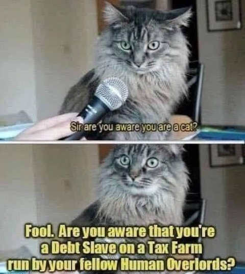 cat aware debt slave tax farm controlled human overlords